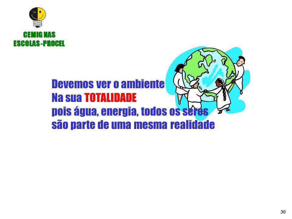 30 Devemos ver o ambiente Na sua TOTALIDADE pois água, energia, todos os seres são parte de uma mesma realidade CEMIG NAS ESCOLAS -PROCEL