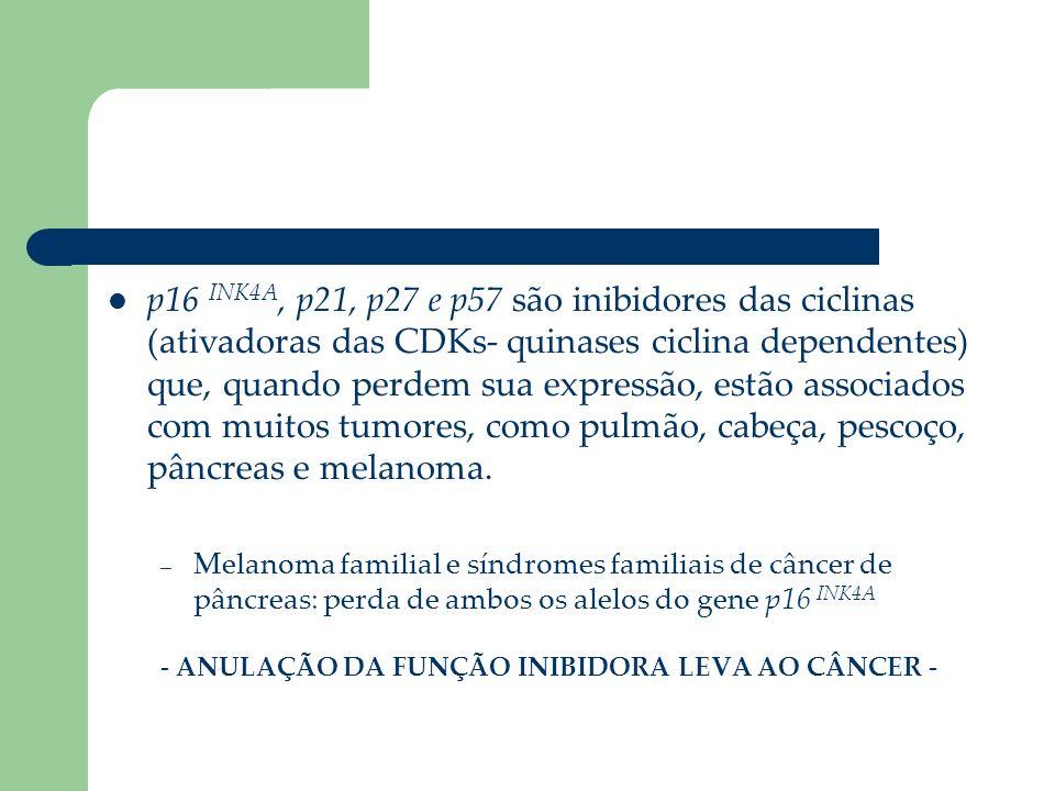 p16 INK4A, p21, p27 e p57 são inibidores das ciclinas (ativadoras das CDKs- quinases ciclina dependentes) que, quando perdem sua expressão, estão asso