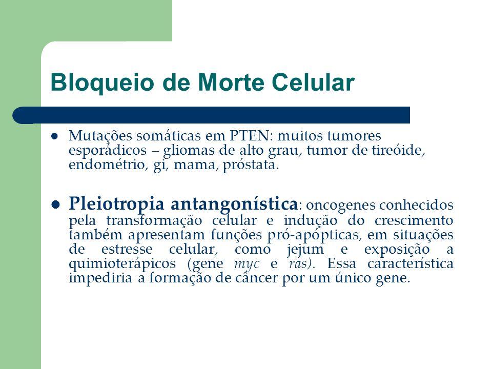 Bloqueio de Morte Celular Mutações somáticas em PTEN: muitos tumores esporádicos – gliomas de alto grau, tumor de tireóide, endométrio, gi, mama, prós