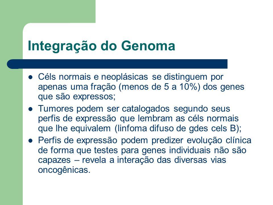 Integração do Genoma Céls normais e neoplásicas se distinguem por apenas uma fração (menos de 5 a 10%) dos genes que são expressos; Tumores podem ser