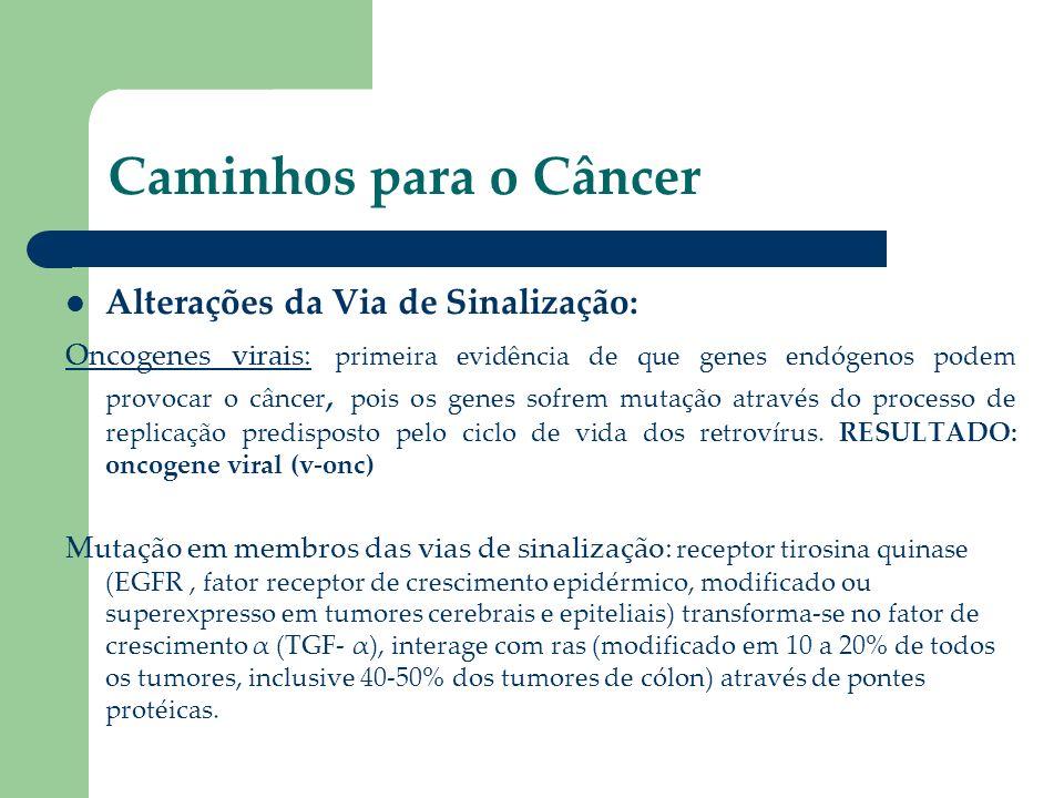 Caminhos para o Câncer Alterações da Via de Sinalização: Oncogenes virais: primeira evidência de que genes endógenos podem provocar o câncer, pois os