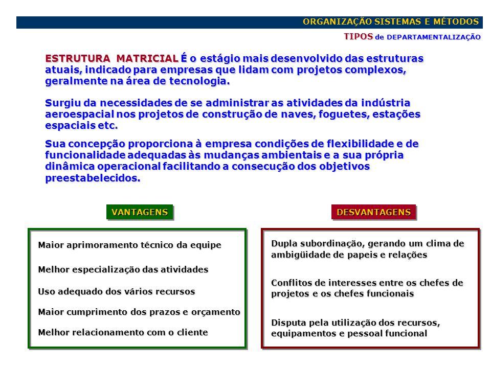 ORGANIZAÇÃO SISTEMAS E MÉTODOS PRINCÍPIOS de DEPARTAMENTALIZAÇÃO PRINCÍPIOSPRINCÍPIOS DE MAIOR USO DE MAIOR USO Quem mais uso fizer da atividade deve tê-la sob sua responsabilidade DE MAIOR INTERESSE DE MAIOR INTERESSE O que mais interesse tiver sobre a atividade deve supervisioná-la DA SEPARAÇÃO DA SEPARAÇÃO As atividades de controle devem ser autônomas, independentes e separadas das que estão sendo controladas DA SUPRESSÃO DA CONCORRÊNCIA DA SUPRESSÃO DA CONCORRÊNCIA Normalmente elimina-se a concorrência agrupando as atividades correlatas em um único departamento.