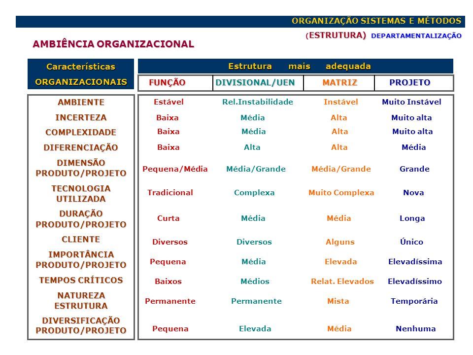 ORGANIZAÇÃO SISTEMAS E MÉTODOS ESTRUTURA) DEPARTAMENTALIZAÇÃO ( ESTRUTURA) DEPARTAMENTALIZAÇÃO CaracterísticasORGANIZACIONAIS FUNÇÃO DIVISIONAL/UEN MA