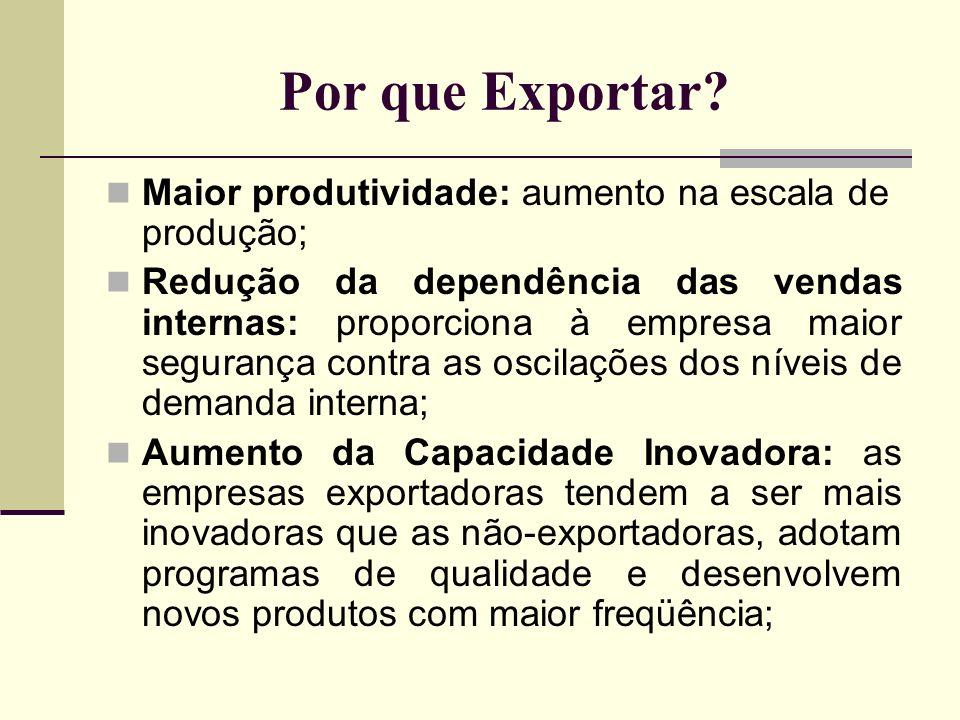 Por que Exportar? Maior produtividade: aumento na escala de produção; Redução da dependência das vendas internas: proporciona à empresa maior seguranç