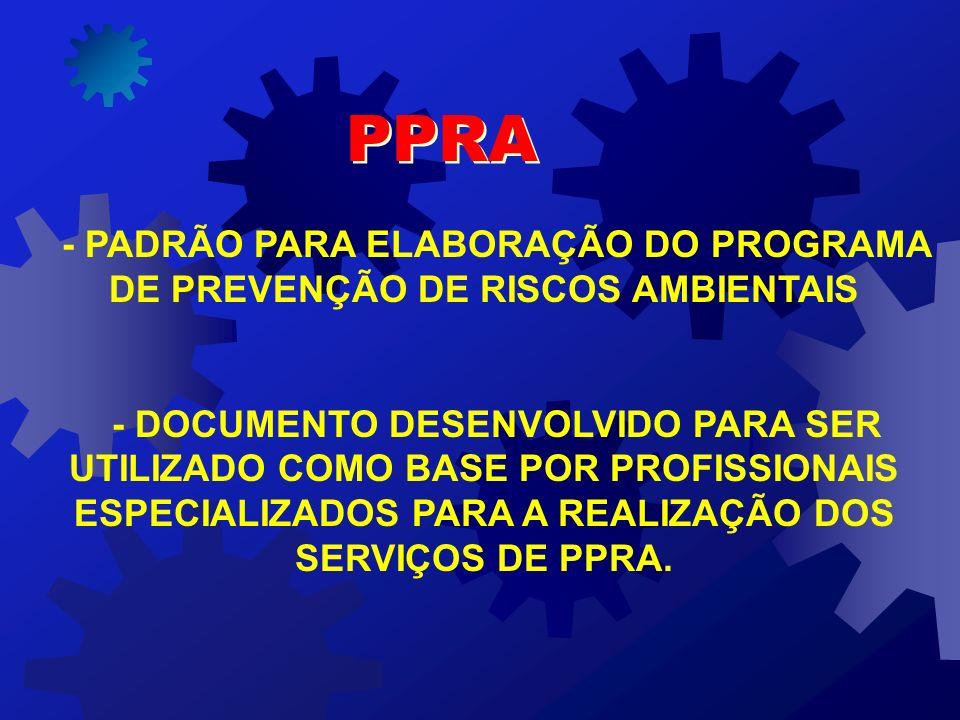 - PADRÃO PARA ELABORAÇÃO DO PROGRAMA DE PREVENÇÃO DE RISCOS AMBIENTAIS - DOCUMENTO DESENVOLVIDO PARA SER UTILIZADO COMO BASE POR PROFISSIONAIS ESPECIALIZADOS PARA A REALIZAÇÃO DOS SERVIÇOS DE PPRA.