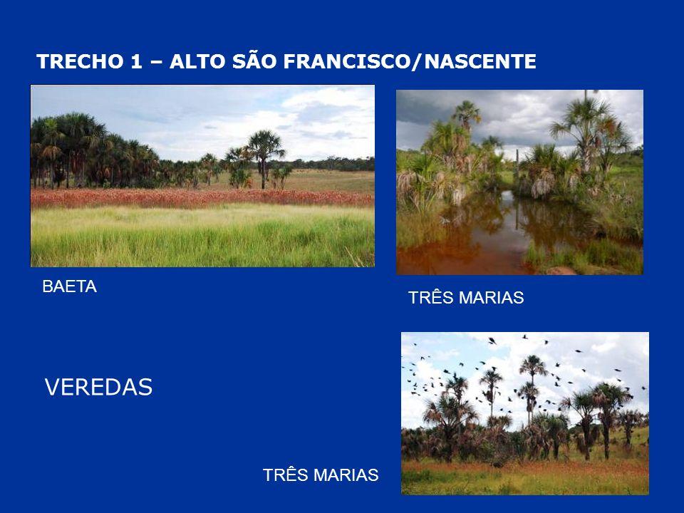 TRECHO 1 – ALTO SÃO FRANCISCO/NASCENTE VEREDAS BAETA TRÊS MARIAS