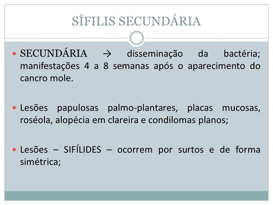 SÍFILIS SECUNDÁRIA SECUNDÁRIA disseminação da bactéria; manifestações 4 a 8 semanas após o aparecimento do cancro mole. Lesões papulosas palmo-plantar