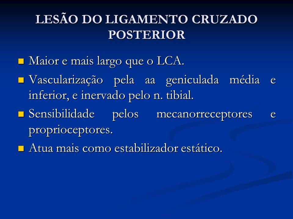 LESÃO DO LIGAMENTO CRUZADO POSTERIOR Maior e mais largo que o LCA.