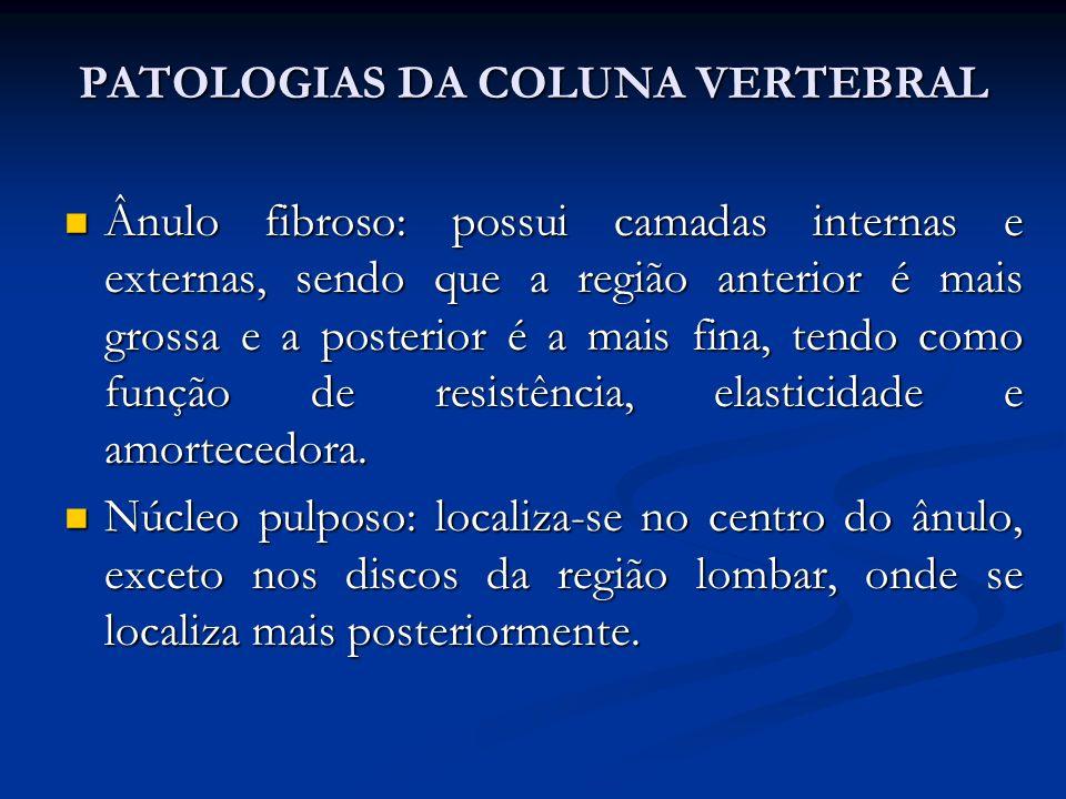 PATOLOGIAS DA COLUNA VERTEBRAL Ânulo fibroso: possui camadas internas e externas, sendo que a região anterior é mais grossa e a posterior é a mais fina, tendo como função de resistência, elasticidade e amortecedora.