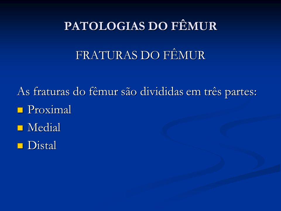 PATOLOGIAS DO FÊMUR FRATURAS DO FÊMUR As fraturas do fêmur são divididas em três partes: Proximal Proximal Medial Medial Distal Distal