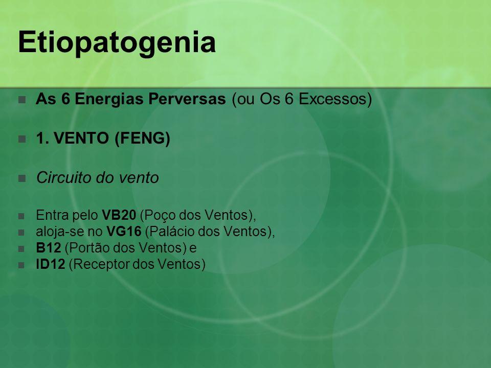 Etiopatogenia As 6 Energias Perversas (ou Os 6 Excessos) 1. VENTO (FENG) Circuito do vento Entra pelo VB20 (Poço dos Ventos), aloja-se no VG16 (Paláci