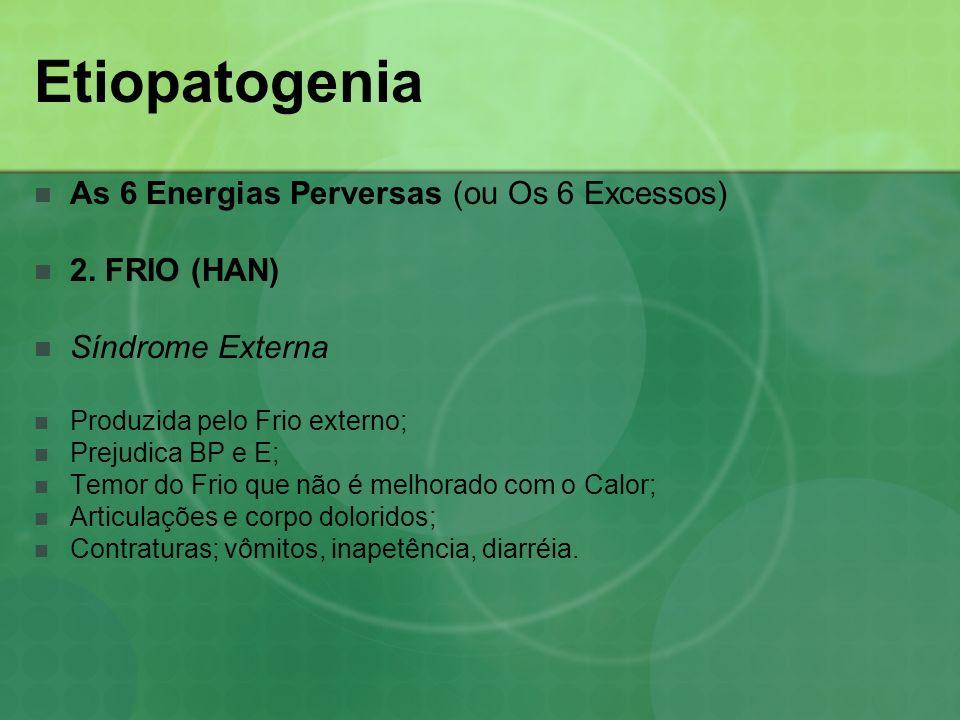 Etiopatogenia As 6 Energias Perversas (ou Os 6 Excessos) 2. FRIO (HAN) Síndrome Externa Produzida pelo Frio externo; Prejudica BP e E; Temor do Frio q
