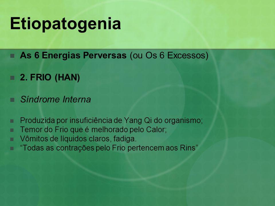 Etiopatogenia As 6 Energias Perversas (ou Os 6 Excessos) 2. FRIO (HAN) Síndrome Interna Produzida por insuficiência de Yang Qi do organismo; Temor do