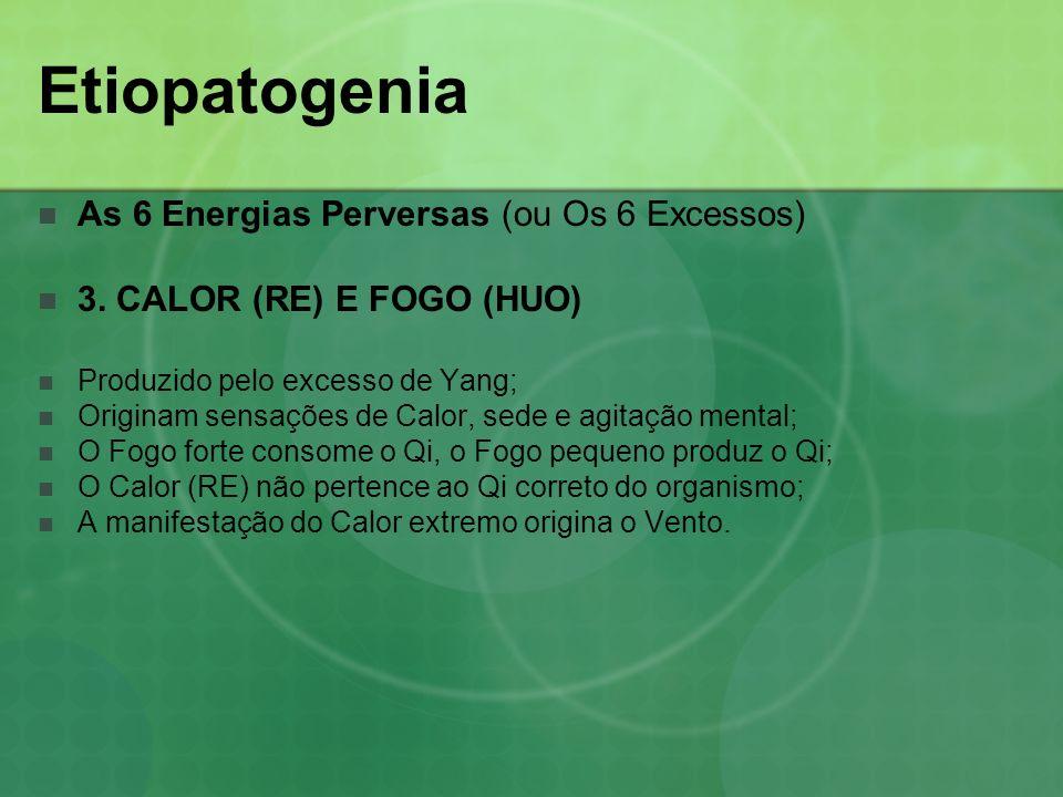 Etiopatogenia As 6 Energias Perversas (ou Os 6 Excessos) 3. CALOR (RE) E FOGO (HUO) Produzido pelo excesso de Yang; Originam sensações de Calor, sede
