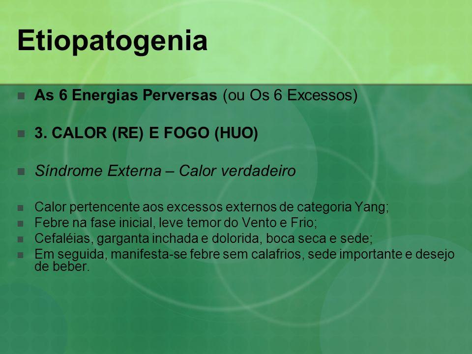Etiopatogenia As 6 Energias Perversas (ou Os 6 Excessos) 3. CALOR (RE) E FOGO (HUO) Síndrome Externa – Calor verdadeiro Calor pertencente aos excessos