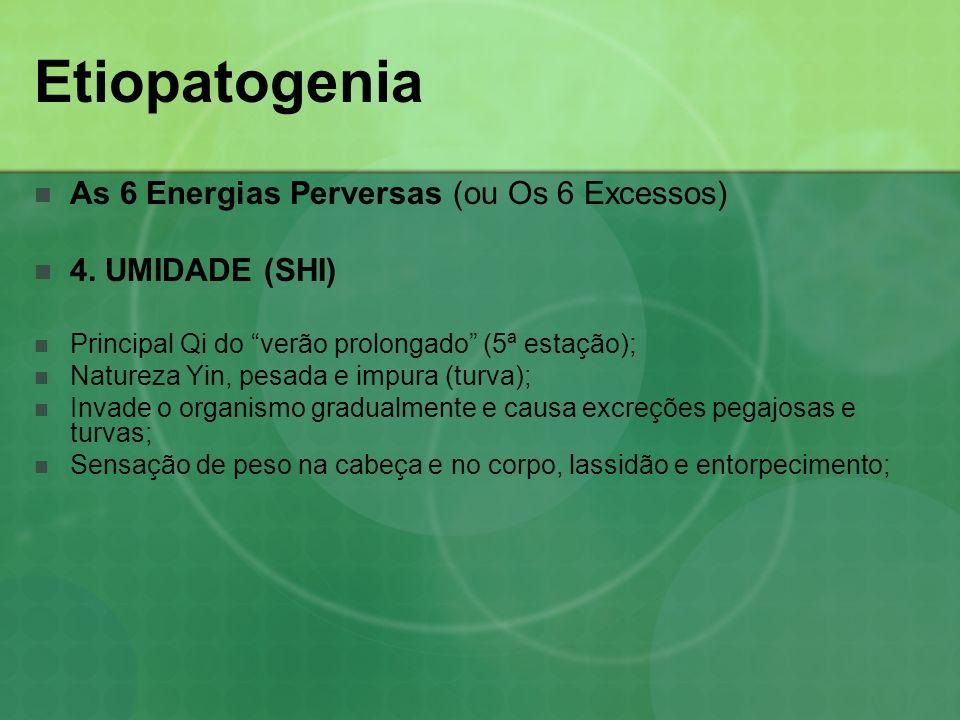 Etiopatogenia As 6 Energias Perversas (ou Os 6 Excessos) 4. UMIDADE (SHI) Principal Qi do verão prolongado (5ª estação); Natureza Yin, pesada e impura