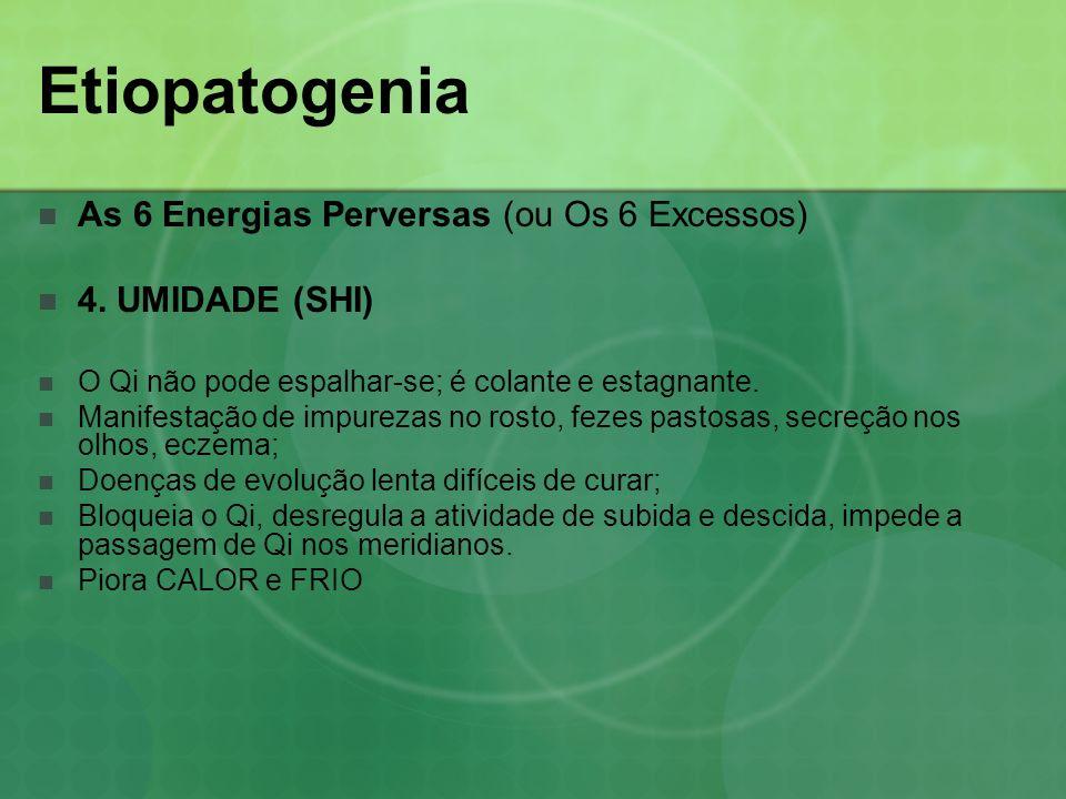 Etiopatogenia As 6 Energias Perversas (ou Os 6 Excessos) 4. UMIDADE (SHI) O Qi não pode espalhar-se; é colante e estagnante. Manifestação de impurezas