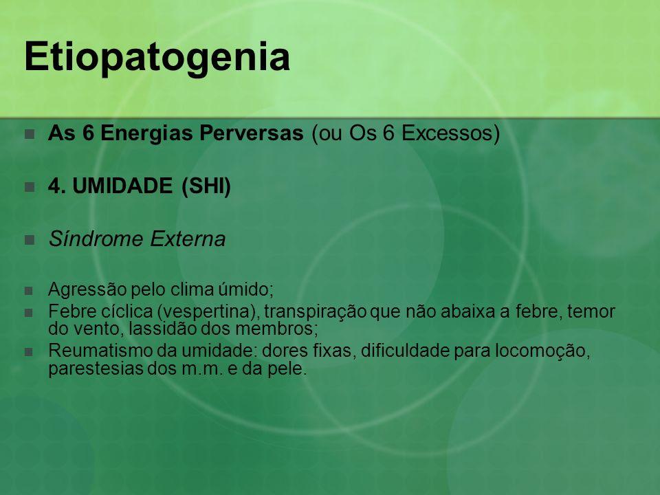 Etiopatogenia As 6 Energias Perversas (ou Os 6 Excessos) 4. UMIDADE (SHI) Síndrome Externa Agressão pelo clima úmido; Febre cíclica (vespertina), tran