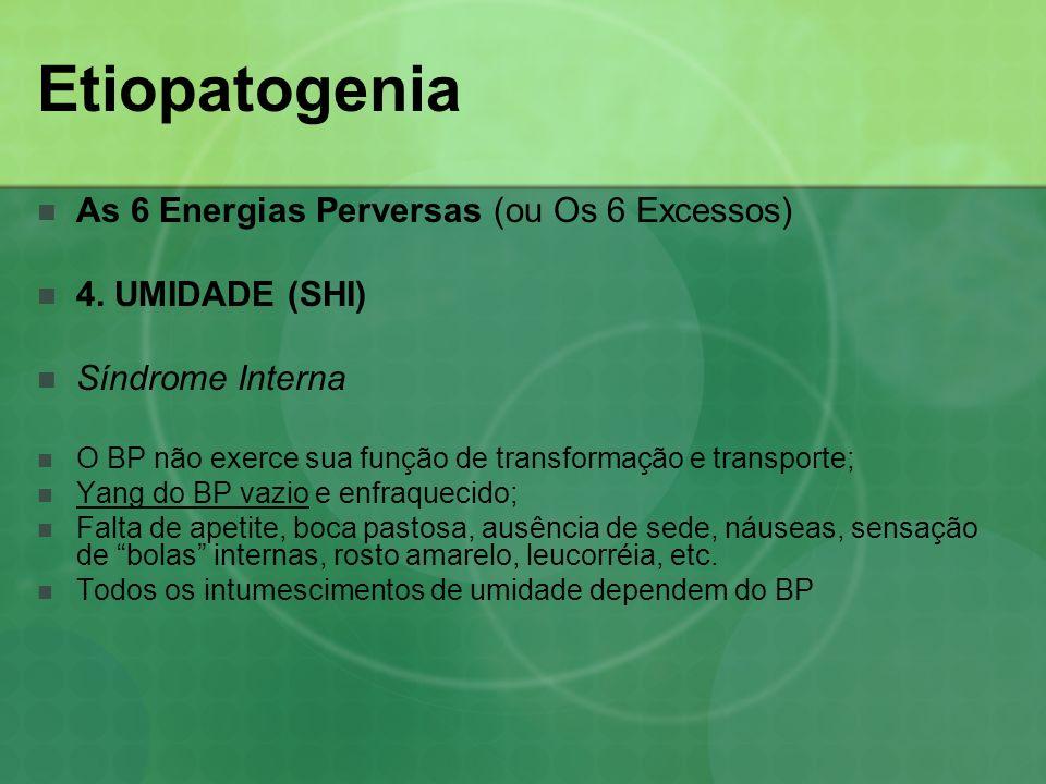 Etiopatogenia As 6 Energias Perversas (ou Os 6 Excessos) 4. UMIDADE (SHI) Síndrome Interna O BP não exerce sua função de transformação e transporte; Y
