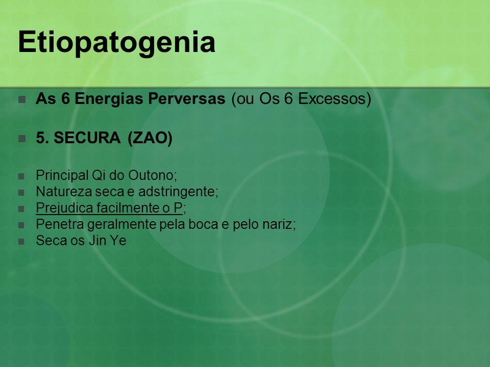 Etiopatogenia As 6 Energias Perversas (ou Os 6 Excessos) 5. SECURA (ZAO) Principal Qi do Outono; Natureza seca e adstringente; Prejudica facilmente o