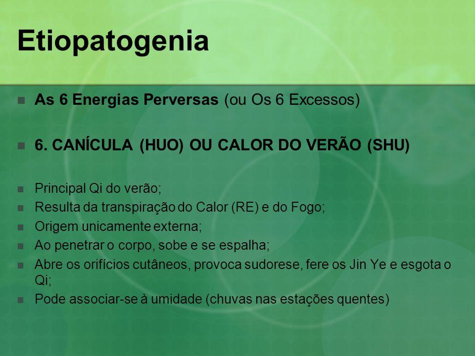 Etiopatogenia As 6 Energias Perversas (ou Os 6 Excessos) 6. CANÍCULA (HUO) OU CALOR DO VERÃO (SHU) Principal Qi do verão; Resulta da transpiração do C