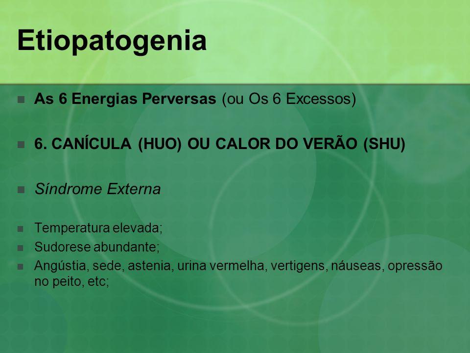 Etiopatogenia As 6 Energias Perversas (ou Os 6 Excessos) 6. CANÍCULA (HUO) OU CALOR DO VERÃO (SHU) Síndrome Externa Temperatura elevada; Sudorese abun