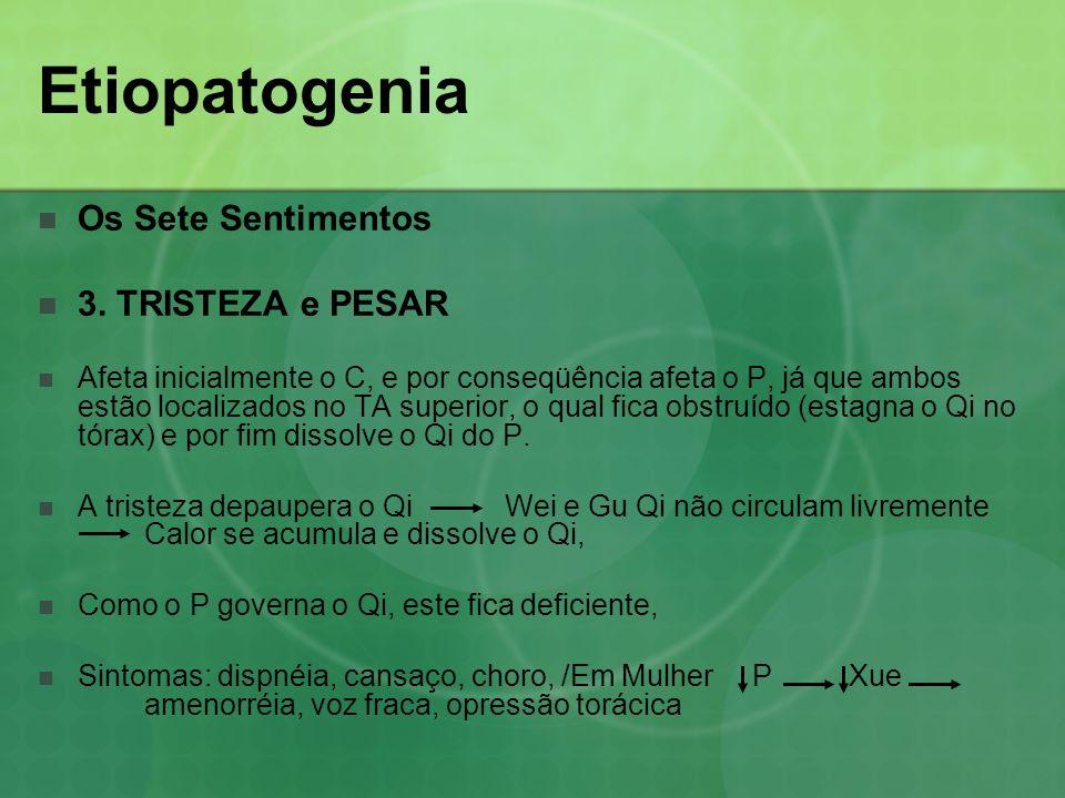 Os Sete Sentimentos 3. TRISTEZA e PESAR Afeta inicialmente o C, e por conseqüência afeta o P, já que ambos estão localizados no TA superior, o qual fi