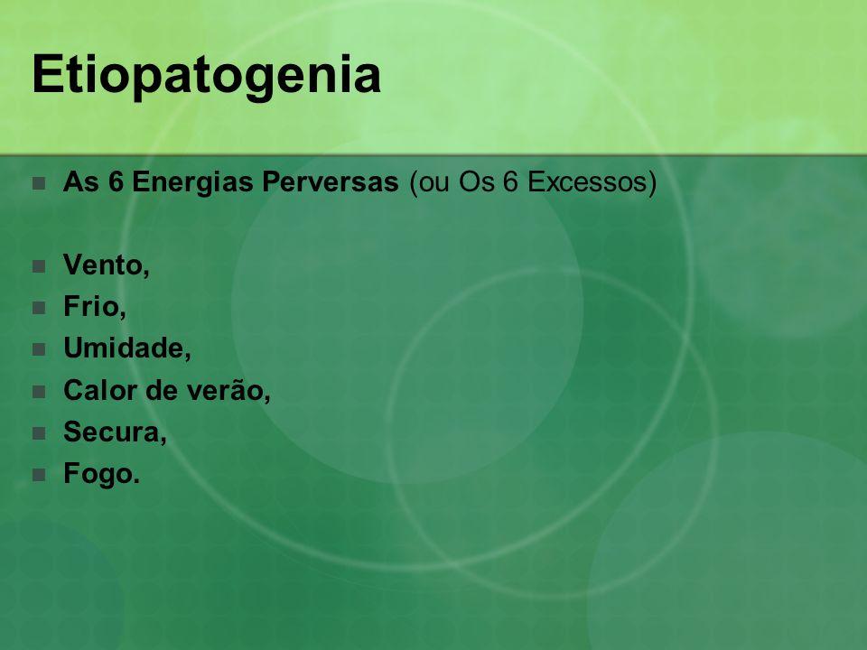 Etiopatogenia As 6 Energias Perversas (ou Os 6 Excessos) Patológicos quando o organismo está prejudicado em relação a eles (a pessoa não consegue se adaptar a elas); Causa e padrão patológico; Constituição determina o tipo de padrão que irá se originar.
