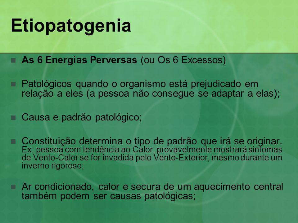 Etiopatogenia As 6 Energias Perversas (ou Os 6 Excessos) Cada sistema apresenta uma aversão específica a determinado clima: XIN odeiaCalor FEIodeia Secura GANodeia Vento PI odeiaUmidade SHENodeia Frio