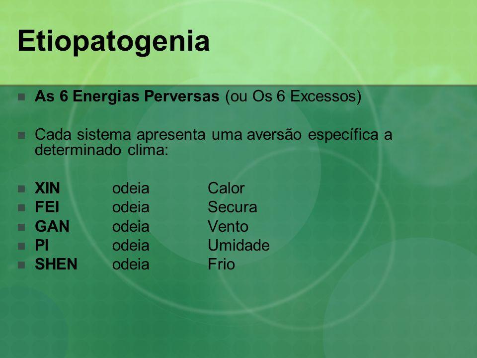 Etiopatogenia As 6 Energias Perversas (ou Os 6 Excessos) Cada sistema apresenta uma aversão específica a determinado clima: XIN odeiaCalor FEIodeia Se