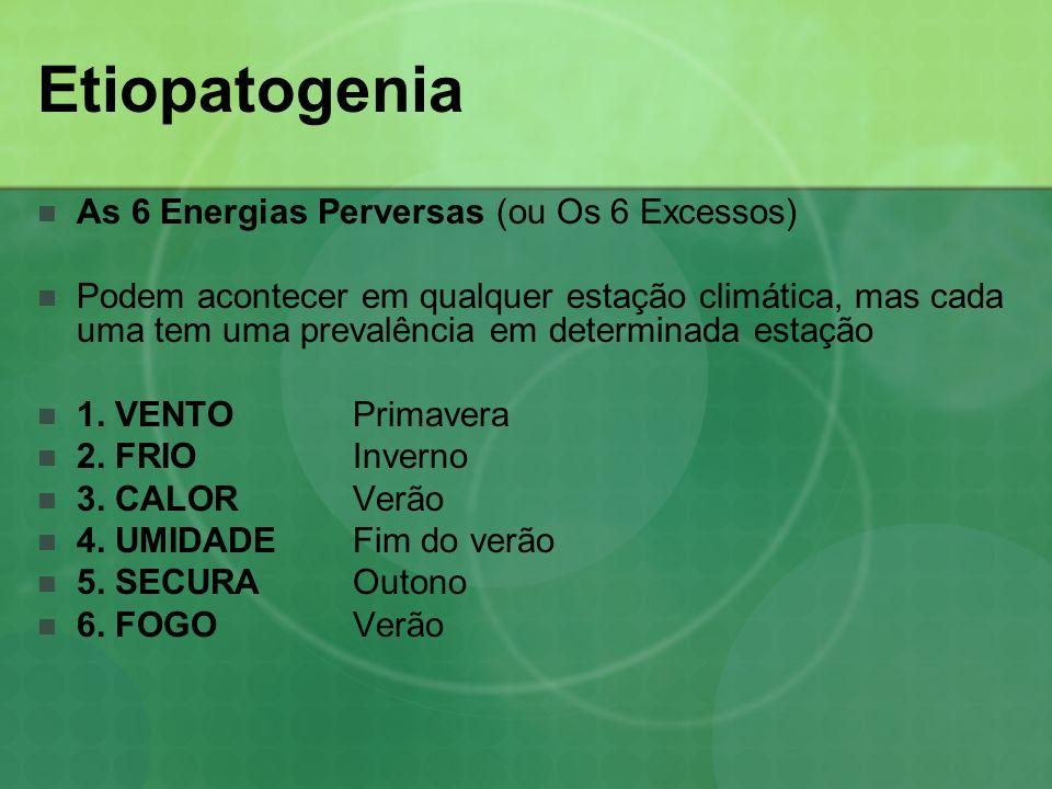 Etiopatogenia As 6 Energias Perversas (ou Os 6 Excessos) Podem acontecer em qualquer estação climática, mas cada uma tem uma prevalência em determinad