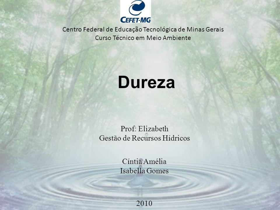 Centro Federal de Educação Tecnológica de Minas Gerais Curso Técnico em Meio Ambiente Dureza Prof: Elizabeth Gestão de Recursos Hídricos Cíntia Amélia