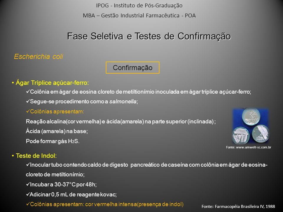 IPOG - Instituto de Pós-Graduação MBA – Gestão Industrial Farmacêutica - POA Fase Seletiva e Testes de Confirmação Escherichia coli Confirmação Ágar T