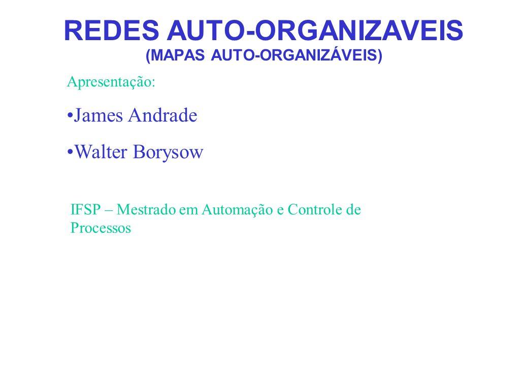 REDES AUTO-ORGANIZAVEIS (MAPAS AUTO-ORGANIZÁVEIS) Apresentação: James Andrade Walter Borysow IFSP – Mestrado em Automação e Controle de Processos