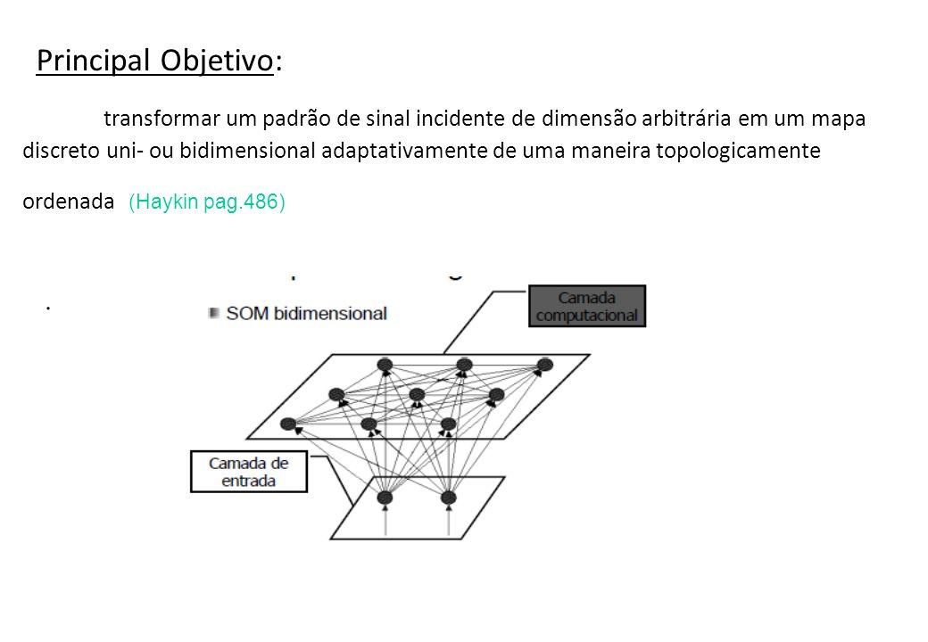 Principal Objetivo: transformar um padrão de sinal incidente de dimensão arbitrária em um mapa discreto uni- ou bidimensional adaptativamente de uma m