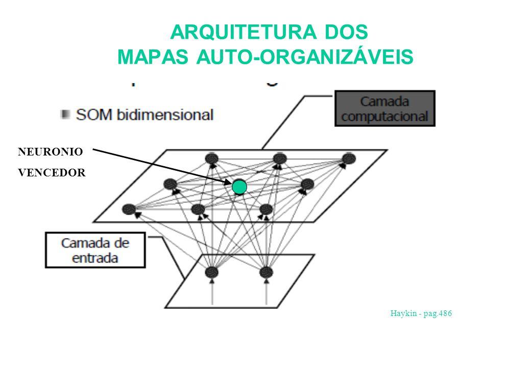 ARQUITETURA DOS MAPAS AUTO-ORGANIZÁVEIS. Haykin - pag.486 NEURONIO VENCEDOR