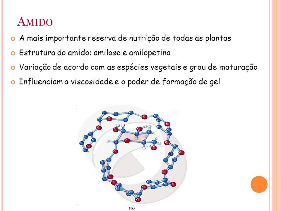 A MIDO A mais importante reserva de nutrição de todas as plantas Estrutura do amido: amilose e amilopetina Variação de acordo com as espécies vegetais