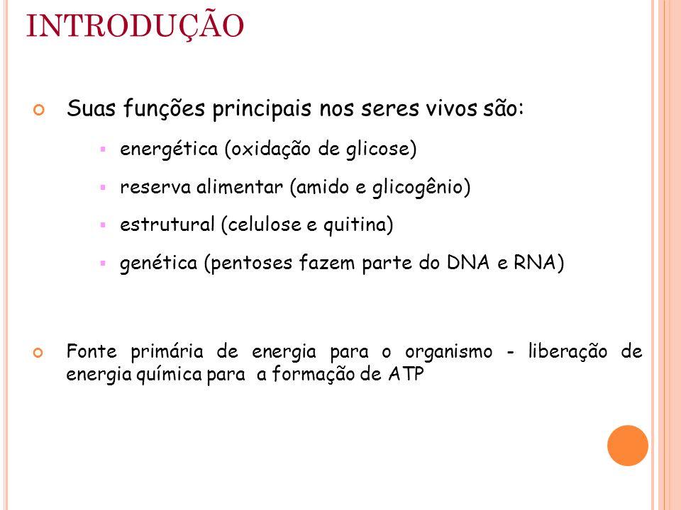 INTRODUÇÃO Suas funções principais nos seres vivos são: energética (oxidação de glicose) reserva alimentar (amido e glicogênio) estrutural (celulose e