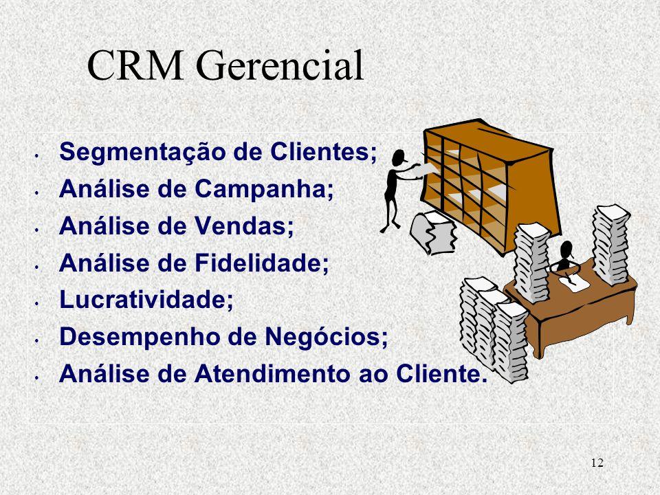 12 Segmentação de Clientes; Análise de Campanha; Análise de Vendas; Análise de Fidelidade; Lucratividade; Desempenho de Negócios; Análise de Atendimento ao Cliente.