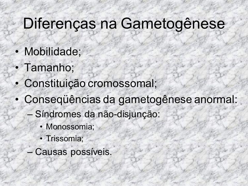 Diferenças na Gametogênese Mobilidade; Tamanho; Constituição cromossomal; Conseqüências da gametogênese anormal: –Síndromes da não-disjunção: Monossom