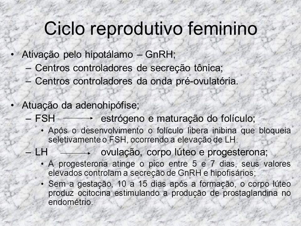 Ciclo reprodutivo feminino Ativação pelo hipotálamo – GnRH; –Centros controladores de secreção tônica; –Centros controladores da onda pré-ovulatória.