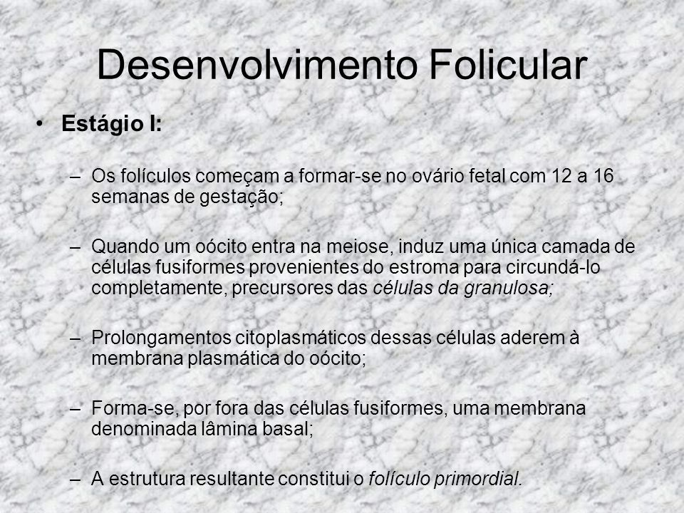 Desenvolvimento Folicular Estágio I: –Os folículos começam a formar-se no ovário fetal com 12 a 16 semanas de gestação; –Quando um oócito entra na mei