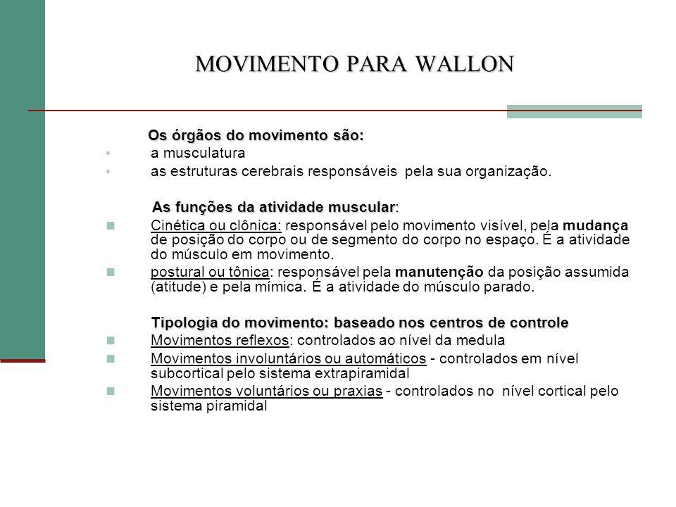 MOVIMENTO PARA WALLON Os órgãos do movimento são: a musculatura as estruturas cerebrais responsáveis pela sua organização. As funções da atividade mus