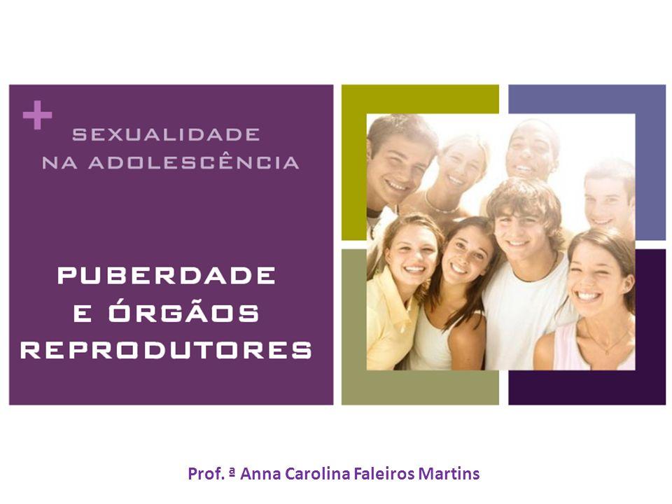 Prof. ª Anna Carolina Faleiros Martins