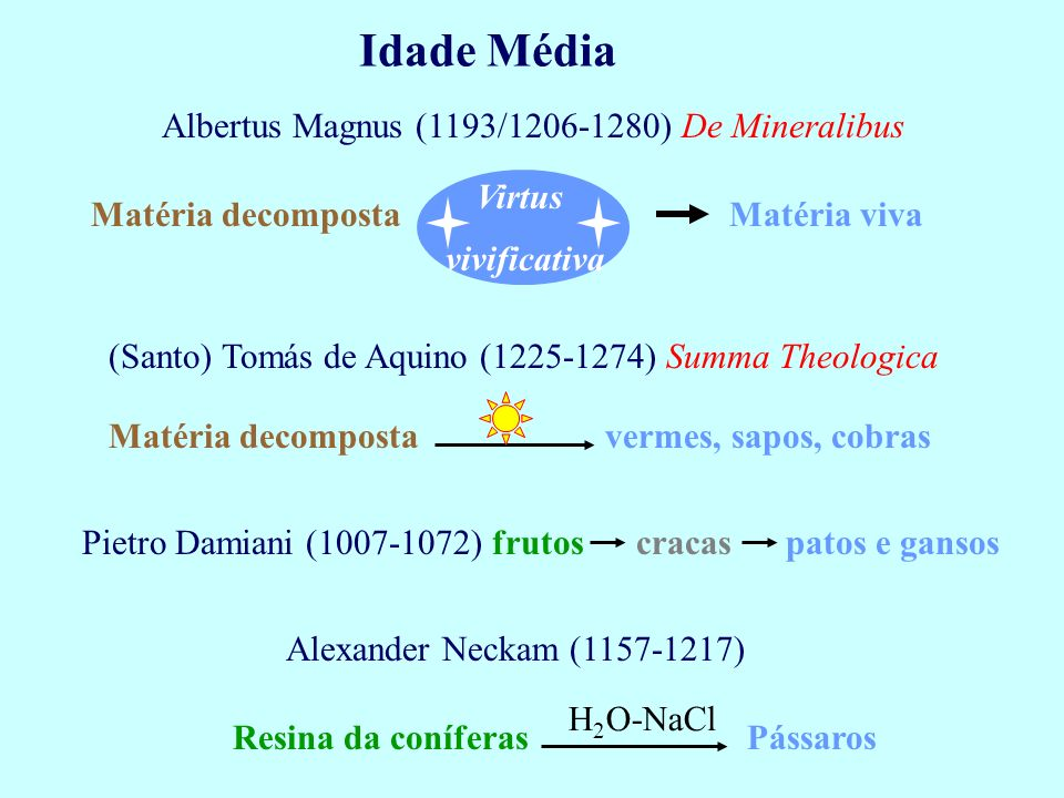 Idade Média Albertus Magnus (1193/1206-1280) De Mineralibus Matéria decomposta Virtus Matéria viva (Santo) Tomás de Aquino (1225-1274) Summa Theologic