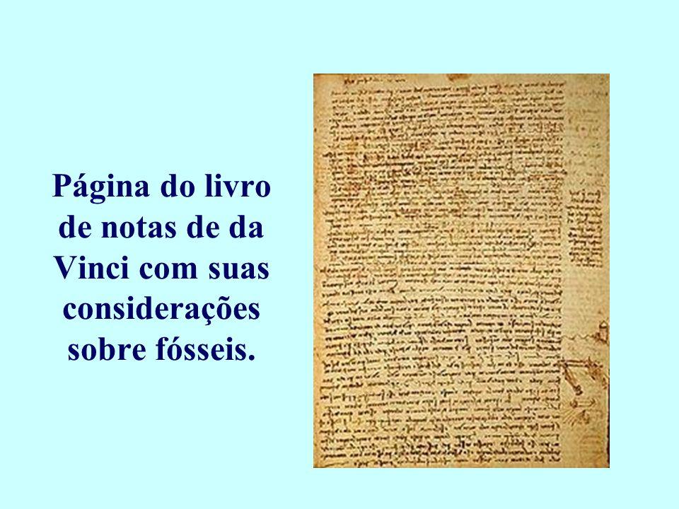 Página do livro de notas de da Vinci com suas considerações sobre fósseis.