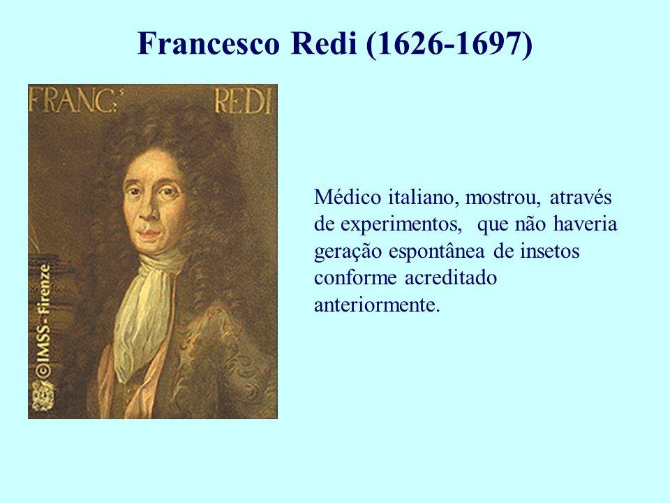 Médico italiano, mostrou, através de experimentos, que não haveria geração espontânea de insetos conforme acreditado anteriormente. Francesco Redi (16