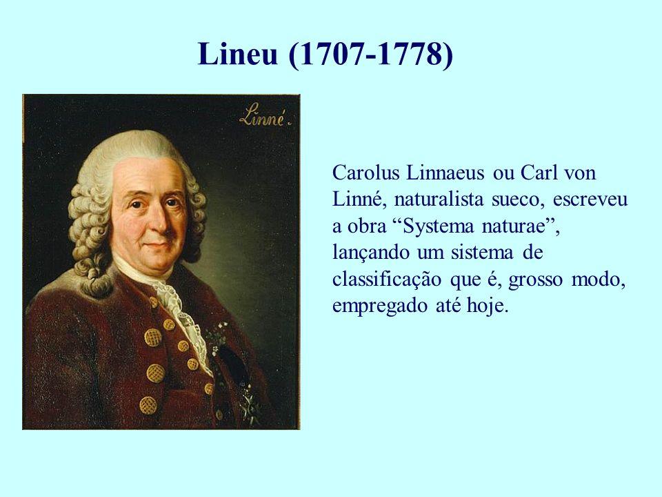 Carolus Linnaeus ou Carl von Linné, naturalista sueco, escreveu a obra Systema naturae, lançando um sistema de classificação que é, grosso modo, empre