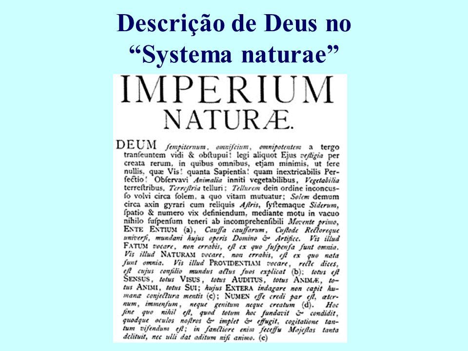 Descrição de Deus no Systema naturae