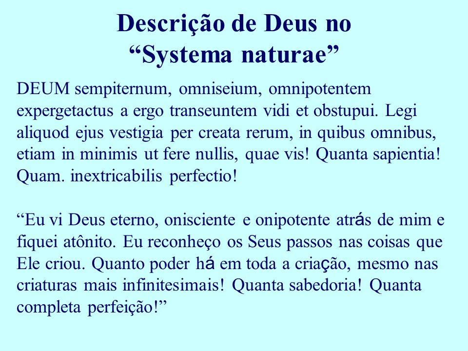 DEUM sempiternum, omniseium, omnipotentem expergetactus a ergo transeuntem vidi et obstupui. Legi aliquod ejus vestigia per creata rerum, in quibus om